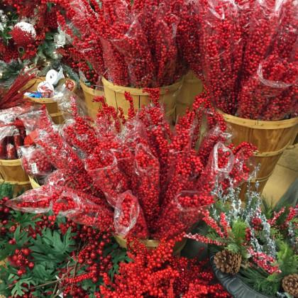 Christmas Tree Store Augusta Ga