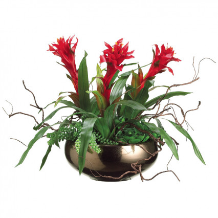 Bromeliad, Sedum, and Hen & Chicks in Ceramic Bowl
