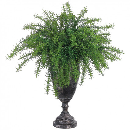 Rosemary in Tin Urn