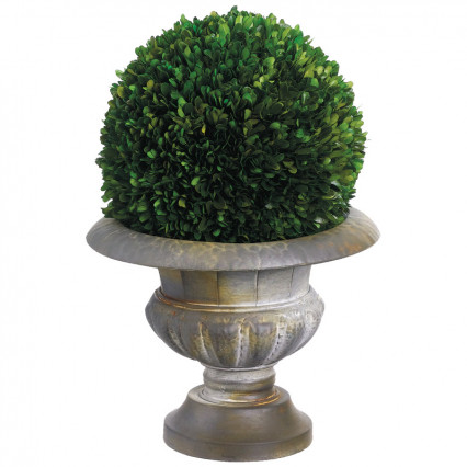 Preserved Boxwood Ball in Tin Urn