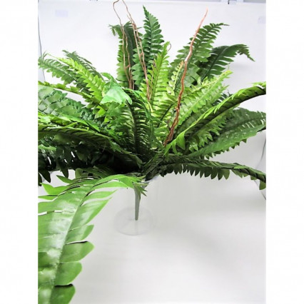 "22"" Boston Fern Bush"